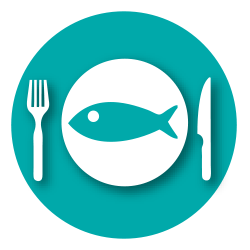 Alimentation - poisson d'acquaculture